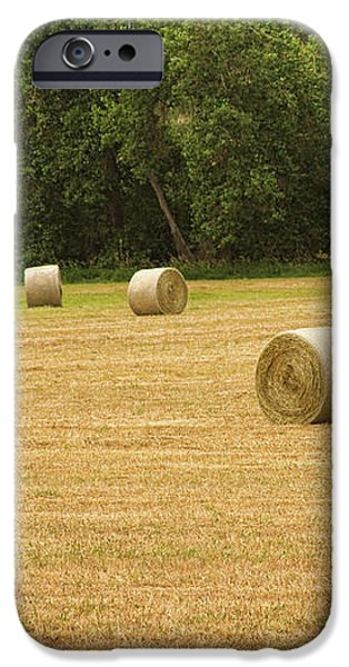Field of Freshly Baled Round Hay Bales iPhone Case by James BO  Insogna