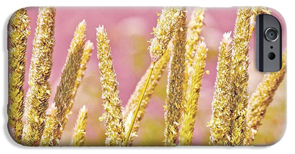 San Francisco Famous Photographers iPhone Cases - Field of Grass and Wildflowers III iPhone Case by Artist and Photographer Laura Wrede