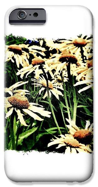 Field of Love iPhone Case by Marsha Heiken