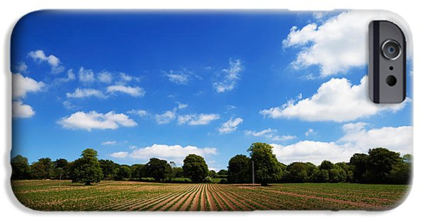 Crops iPhone Cases - Field Of Potatoes, Near Inistioge iPhone Case by Panoramic Images