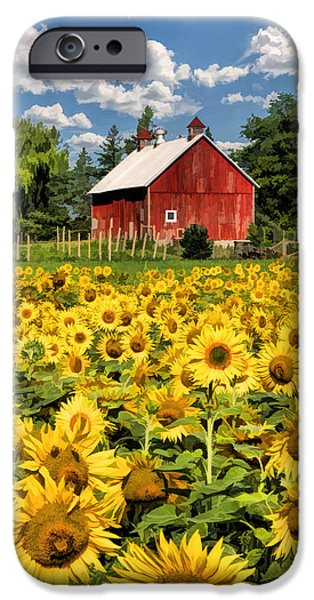 Sunflower Field iPhone Cases - Field of Sunflowers iPhone Case by Christopher Arndt