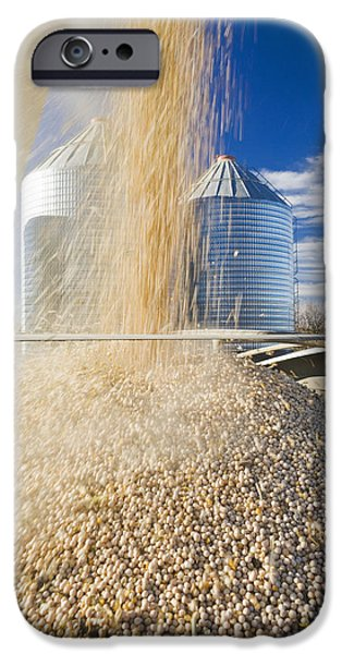 Dave iPhone Cases - Field Peas Being Augered Into A Farm iPhone Case by Dave Reede