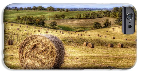 Bales iPhone Cases - Fields of Gold iPhone Case by Scott Norris