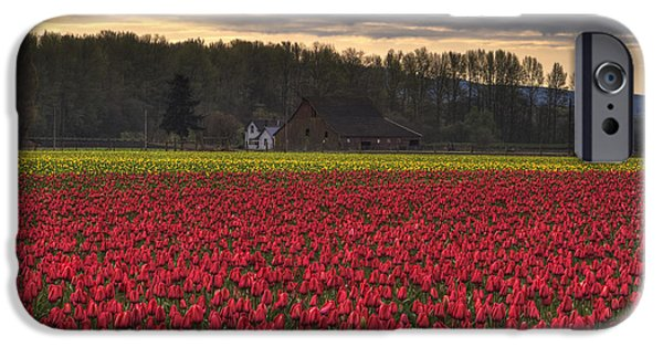Beauty Mark iPhone Cases - Fields of Tulips iPhone Case by Mark Kiver