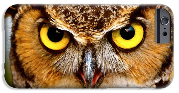 The Tiger iPhone Cases - Fierce Eyes iPhone Case by Parker Cunningham
