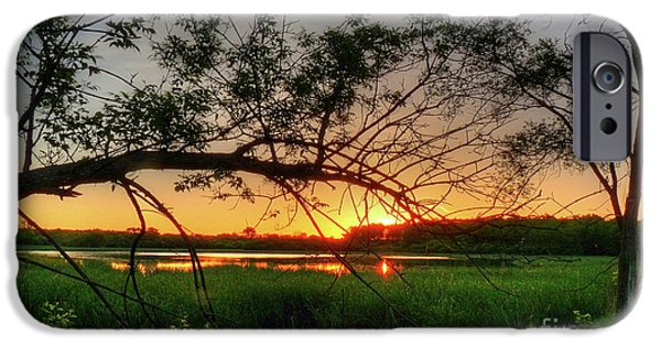 Nature Center Pond iPhone Cases - Fiery Swamp Sunset iPhone Case by Deborah Smolinske