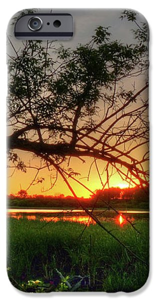 Fiery Swamp Sunset iPhone Case by Deborah Smolinske