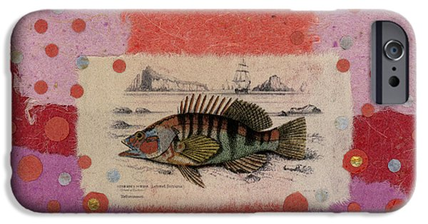 Impacting iPhone Cases - Fiesta Fish Collage iPhone Case by Carol Leigh