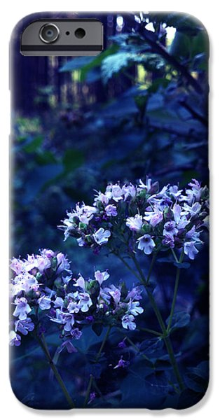Lucy D iPhone Cases - Fifty Shades of Purple iPhone Case by Lucy D