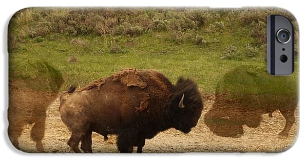 Iconic Mixed Media iPhone Cases - Fighting Buffalo iPhone Case by Dan Sproul