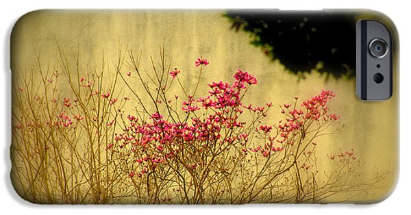 Filigree iPhone Cases - Filigree 3 in a frame iPhone Case by Susanne Van Hulst