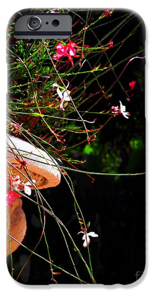 Filigree iPhone Cases - Filigree 4 in a frame iPhone Case by Susanne Van Hulst
