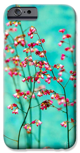 Filigree iPhone Cases - Filigree in a frame iPhone Case by Susanne Van Hulst