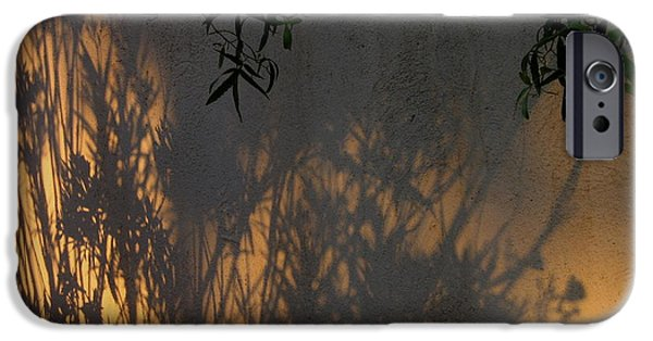 Richard Conte iPhone Cases - Film Noir Edward G. Robinson Richard Conte House of Strangers 1949 Casa Grande Arizona 2004 iPhone Case by David Lee Guss