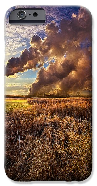 Power Photographs iPhone Cases - Finding the Beauty Within iPhone Case by Phil Koch