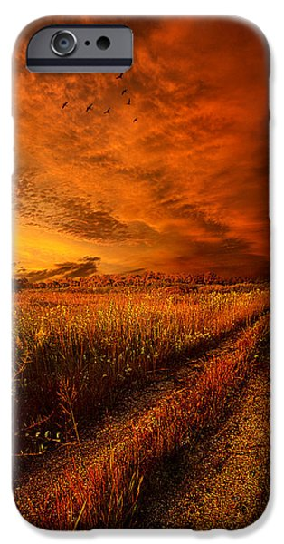 Vertical Flight iPhone Cases - Finding the Way Home iPhone Case by Phil Koch