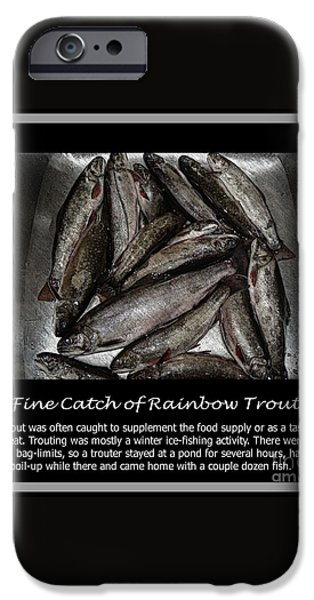 Fine Catch of Rainbow Trout iPhone Case by Barbara Griffin