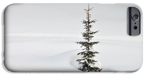 Simplistic iPhone Cases - Fir tree and lots of snow in winter Kleinwalsertal Austria iPhone Case by Matthias Hauser