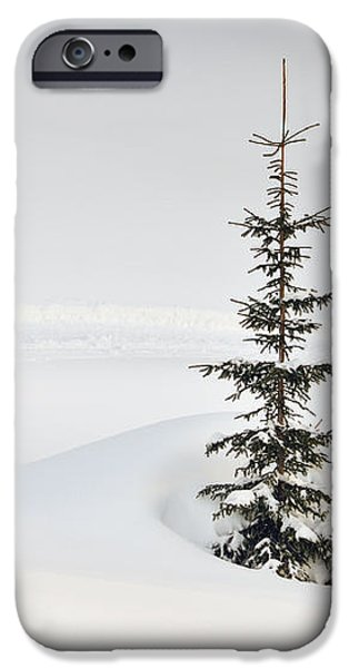 Fir tree and lots of snow in winter Kleinwalsertal Austria iPhone Case by Matthias Hauser