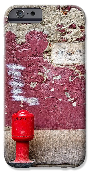 Fire Hydrant iPhone Cases - Fire Hydrant iPhone Case by Delphimages Photo Creations