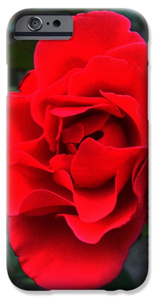 Lucy D iPhone Cases - Fire iPhone Case by Lucy D