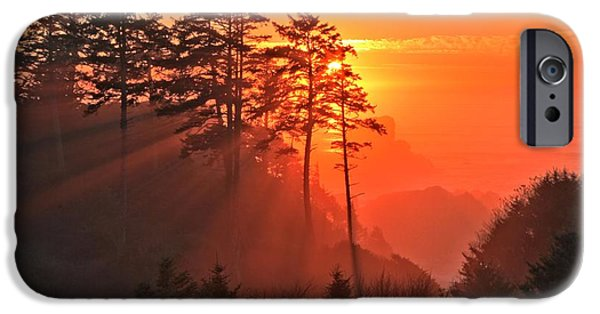 Ocean Sunset iPhone Cases - Fire Through The Trees iPhone Case by Adam Jewell
