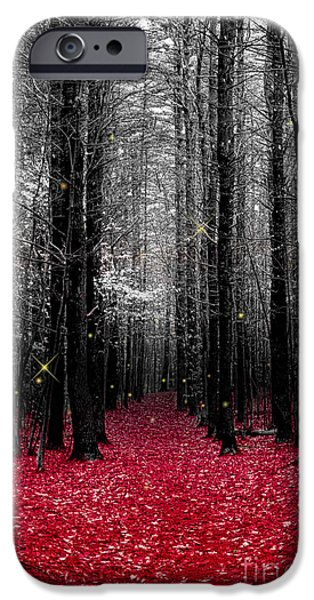 Pathway iPhone Cases - Firefly iPhone Case by K Hines