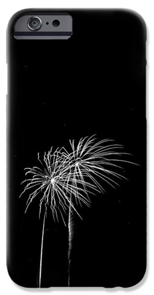 Fireworks iPhone Cases - Firework Palm Trees iPhone Case by Darryl Dalton