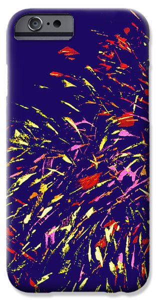 Fireworks iPhone Case by Elizabeth Blair-Nussbaum