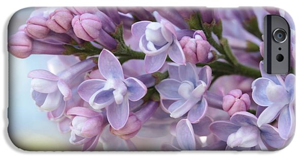 First Love iPhone Cases - First Loves Soft Glow iPhone Case by Connie Handscomb