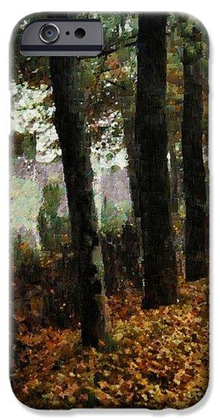 First signs of autumn iPhone Case by Gun Legler