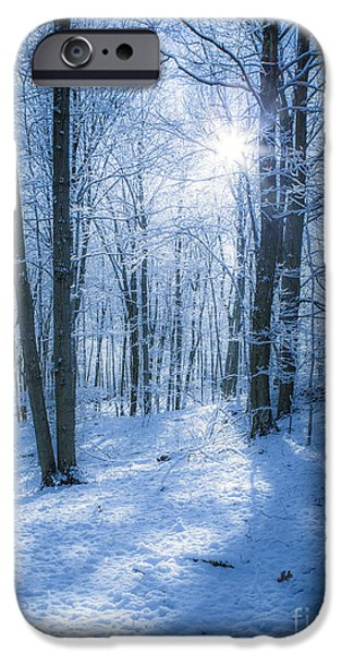 Snow iPhone Cases - First Snow iPhone Case by Diane Diederich