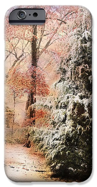 Snow Scene iPhone Cases - First Snow iPhone Case by Jai Johnson