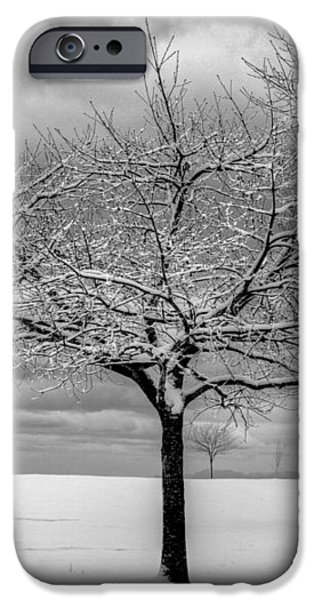 First Snow iPhone Case by Randy Hall