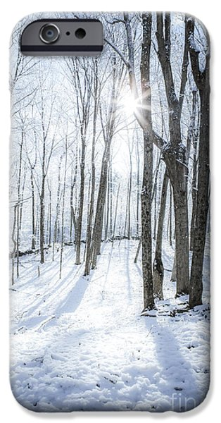 Sun Flare iPhone Cases - First Snowfall iPhone Case by Diane Diederich