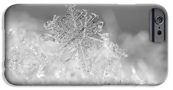 Winter Photographs iPhone Cases - First Snowflake iPhone Case by Rona Black