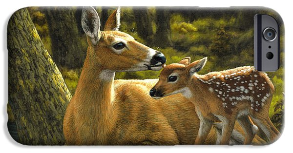 Baby Animal iPhone Cases - First Spring - variation iPhone Case by Crista Forest