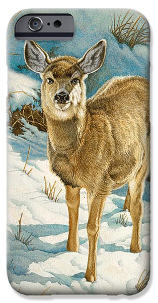 Fawn iPhone Cases - First Winter  - Fawn iPhone Case by Paul Krapf