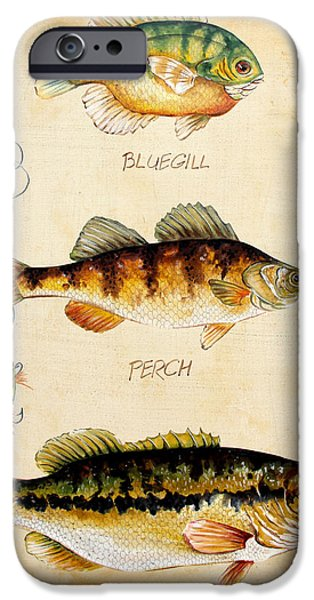 Wild Trout iPhone Cases - Fish Trio-C iPhone Case by Jean Plout