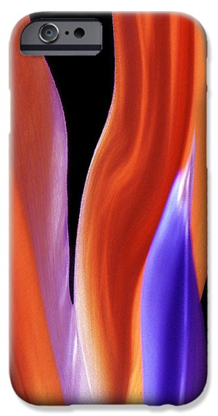 Red Abstract iPhone Cases - Flame - Bird Of Paradise   iPhone Case by Ben and Raisa Gertsberg