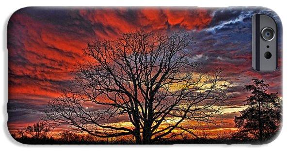 Pastureland iPhone Cases - Flaming Oak Sunrise iPhone Case by Reid Callaway