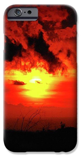 Flaming Sunset iPhone Case by Christi Kraft