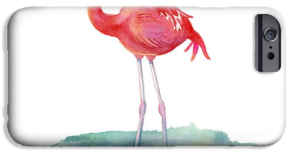 Flamingoes iPhone Cases - Flamingo Pose iPhone Case by Amy Kirkpatrick