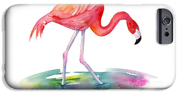 Flamingoes iPhone Cases - Flamingo Step iPhone Case by Amy Kirkpatrick