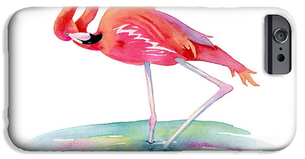 Flamingoes iPhone Cases - Flamingo View iPhone Case by Amy Kirkpatrick