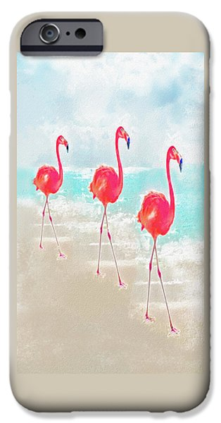 Flamingo iPhone Cases - Flamingos On The Beach iPhone Case by Jane Schnetlage