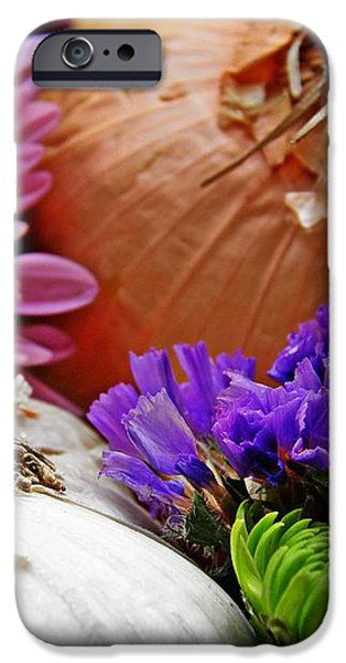 Flavored with Onion and Garlic iPhone Case by Sarah Loft