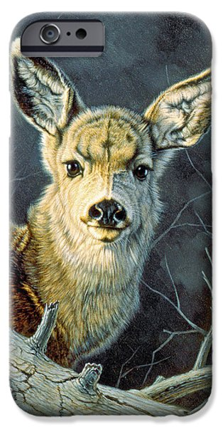 Fawn iPhone Cases - Fleeting Visit- Fawn iPhone Case by Paul Krapf
