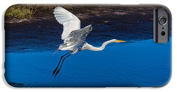Statue Portrait iPhone Cases - Flight of the Egret iPhone Case by John Bailey