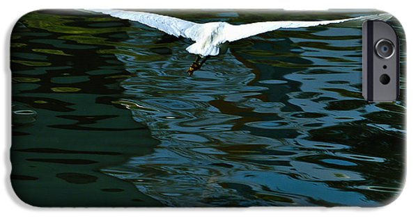 United States iPhone Cases - Flight of the Egret iPhone Case by  Bob and Nadine Johnston
